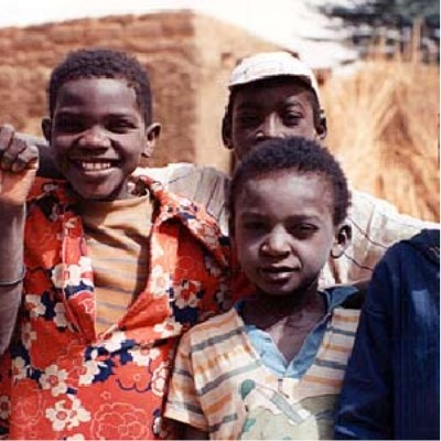 "The image is a detail from the a photo titled ""Boys at Boubon, Niger 1992"" from Gallery 5 of the site.  It shows three Nigerian boys posing for a picture."