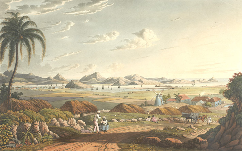 Painting of landscape with a road bordered by palm trees, mountains in the distance