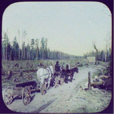Horse drawn carts going down a cleared forest path taken from the view of a railway