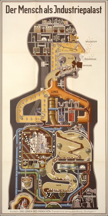"""A German chromolithograph titled """"Der Mensch als Industriepalast (Man as Industrial Palace)"""" showing the digestive and respiratory system as an chemical plant."""