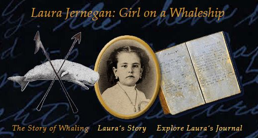 """Screenshot of the website home page reading the page title """"Laura Jernegan: Girl on a Whaleship"""" and the three main section links- """"The Story of Whaling"""", """"Laura's Story"""", and """"Explore Laura's Journal"""""""