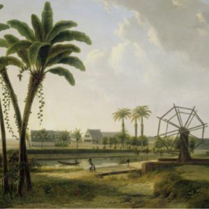 View of the Coffee Plantation Marienbosch in Surinam