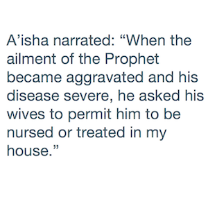 Excerpts from the Hadith by A'isha