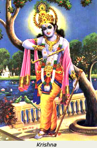 image of the god krishna