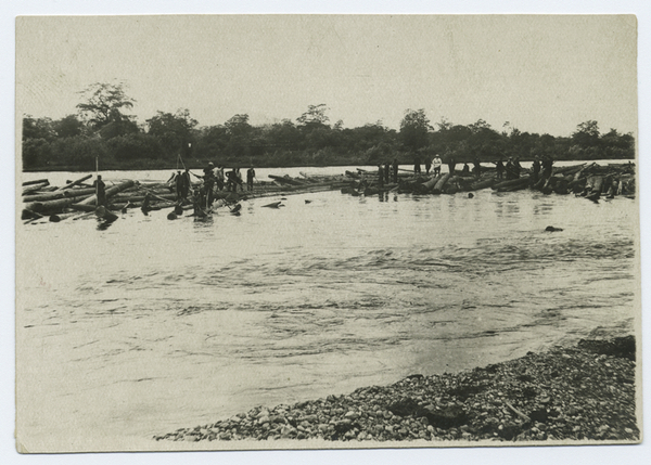 Black and white photograph of prisoners standing on logs in the middle of a stream