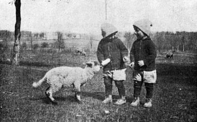 Picture of two orphan children feeding a goat