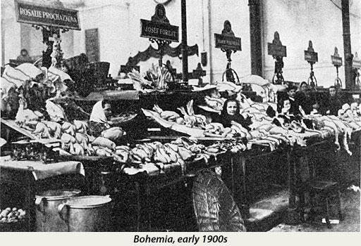 Rare photograph of women from Bohemia